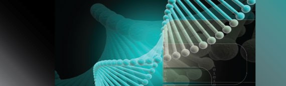 When is DNA Paternity Testing Useful?