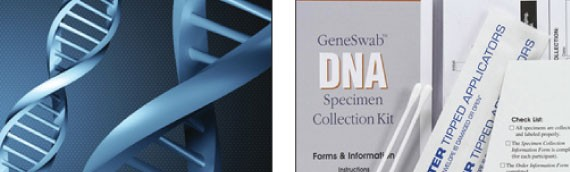 Legal v Personal DNA Testing Options